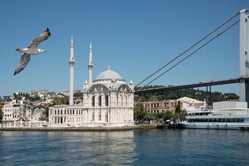 Excursão guiada particular por Hagia Sofia e Palácio de Topkapi...