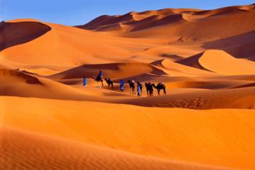 2 dias, 1 noite no deserto privado de...