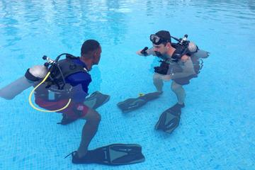 PADI Open Water Diver Course in Bayahibe