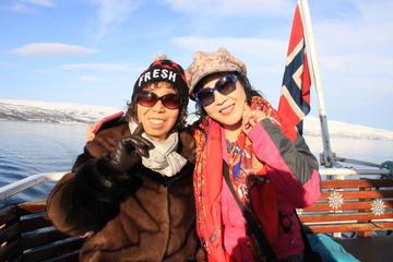 Fjordcruise met spotten van arctische wilde dieren vanuit Tromso