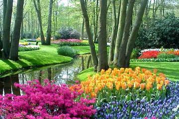 Amsterdã supereconômica: passeio de um dia nos Jardins Keukenhof e...