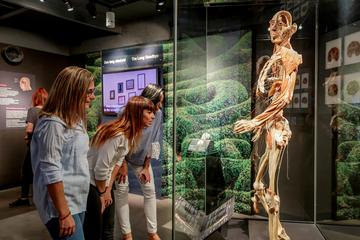 Amsterdam Body Worlds Skip-the-Line...