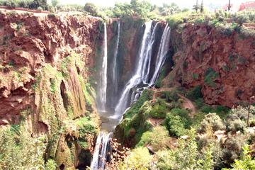 Private Day Trip: Waterfalls of Ouzoud and Imi n'Ifri from Marrakech