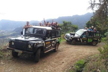 Safári de jipe de dia Inteiro no leste - Pico do Areeiro - Santana...