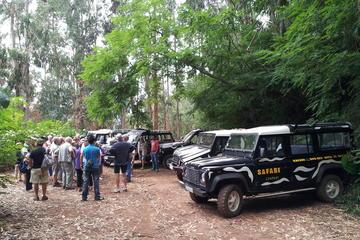 Safari d'une demi-journée au village de Funchal