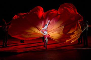 Oper im Hafen von Sydney: Carmen