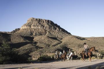 Grand Canyon Western Experience with Horseback or Wagon Ride