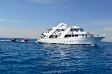 Dolphin Spotting Overnight Cruise to Sataya with Scuba Diving