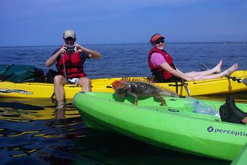 Manuel Antonio Ocean Kayaking & Snorkeling