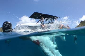 Private St Barth Day Trip from St...