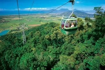 Excursión de un día al teleférico Skyrail sobre la jungla desde Cairns