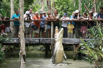 Hartley's Crocodile Adventure Half-Day Tour