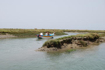 Bird Watching Guided Boat Trip in Ria Formosa from Faro Algarve