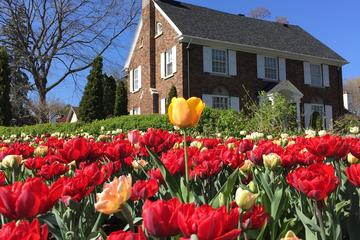 Book Ottawa Spring Tulip Festival Bike Tour on Viator