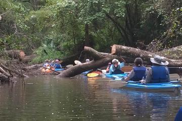 Day Trip 2 Day, 1 Night Kayak Adventure & Camp Out near Stockton, Alabama
