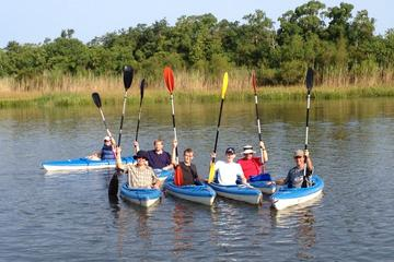 Day Trip Delta Wildlife Kayak Tour near Spanish Fort, Alabama