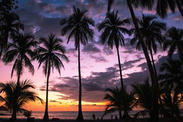 Excursión de 15 días: Lo mejor de Costa Rica
