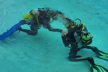 Descubrimiento del submarinismo en...
