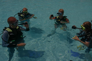 Learn to Scuba Dive- PADI Open Water Course