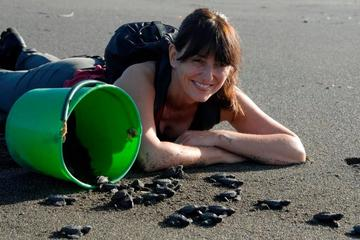 Costa Rica Discovery Tour: Help Protect Sea Turtles