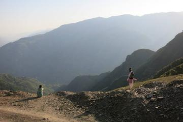 Half-Day Guided Walking Tour from Shimla with Lunch