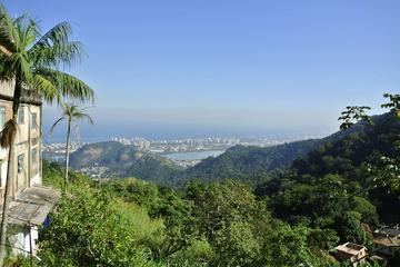 Rio de Janeiro Adventure Tour: Urban Jungle Trek