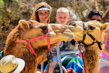 Camel Rde and Animal Sanctuary Tour in Los Cabos