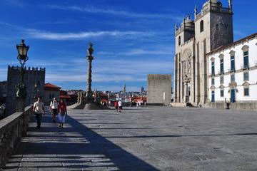 Excursión de medio día al Oporto Monumental con cata de vinos
