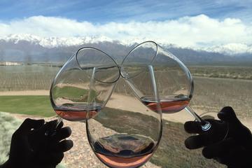 Excursão privada: região vinícola de Lujan de Cuyo saindo de Mendoza