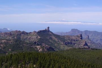 Gran Canaria Full-Day Tour from Las...
