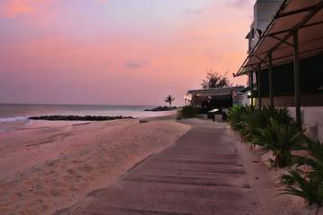 Barbados Rum, Sun and Beach Tour
