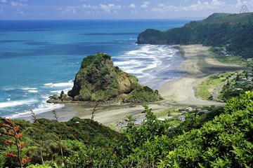 Full-Day Piha and Waitakere Eco-Tour Including Lunch from Auckland