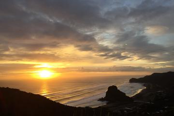 Private Tour: Full-Day Piha and ...