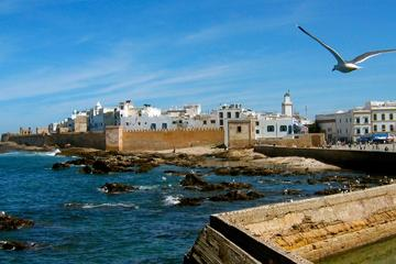 Essaouira Highlights: Small-Group Day...