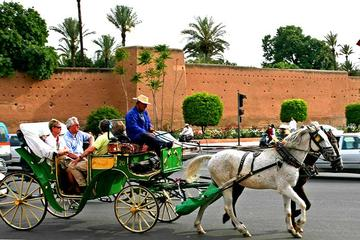 Marrakech discovery tour in open carriage with guide