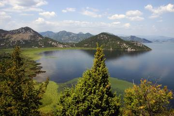 Day tour to Skadar Lake from Kotor Port