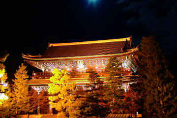 Nighttime Tour of Kyoto by Bus