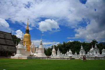 1 day  tour Doi Suthep temple Wat U Mong Wat Saundok Doi Kham temple...