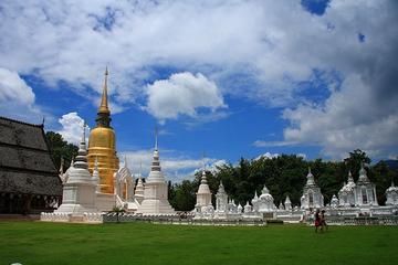 Chiang Mai Temple Tour Including Doi Suthep and Wat Umong