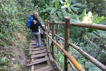 Doi Inthanon Private Tour with Trek...