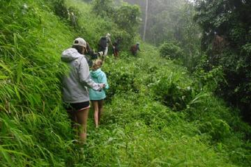 Private Tour: Nature Trekking and Zip Lining from Chiang Mai...