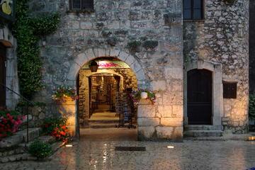 Visite privée: excursion de 6heures jusqu'à Saint-Paul-de-Vence...