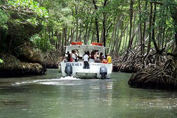 Punta Cana Day Trip to Los Haitises National Park