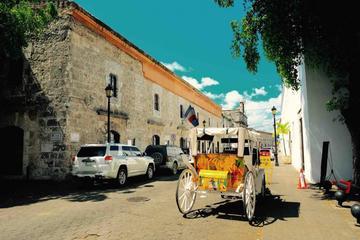 Santo Domingo City Tour from Punta...