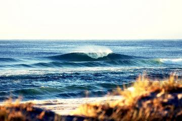 Safári de surfe de 7 dias em Byron Bay, Evans Head e praia de Moonee...