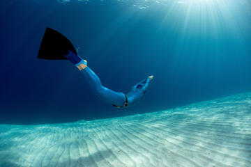 Half-Day Discover Freediving at Koh...