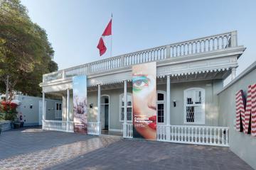 Visita de meio dia ao Museu Mario Testino