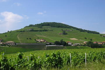 Beaujolais Full-Day Wine Tasting Tour