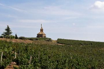 Beaujolais North Wine Private Tour with Wine Tasting from Lyon