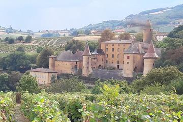 Beaujolais South Gourmet Wine Tour...
